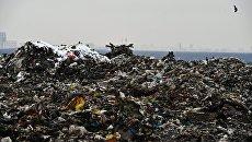 Мусор на полигоне твердых бытовых отходов Кучино в Балашихе Московской области. Архивное фото