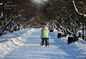 Женщина с коляской в парке Коломенское в Москве