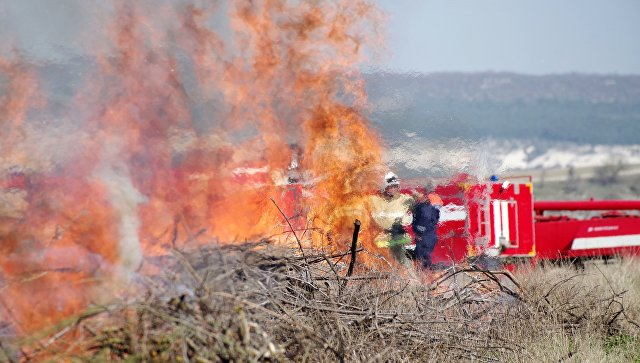 Сотрудники пожарной службы во время учений по ликвидации крупного лесного пожара. Архивное фото