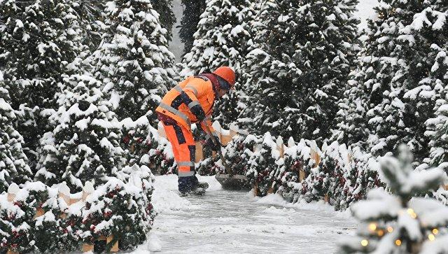 """Куда """"исчезают"""" сугробы: как Москва справляется со снегопадом"""