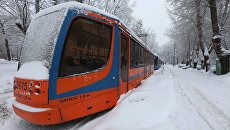 Трамваи, временно оставшиеся без электричества в результате падения дерева на провода из-за снегопада в Москве. 4 февраля 2018