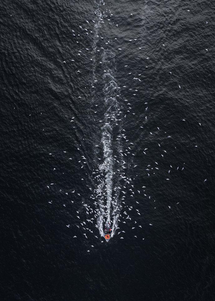 Снимок Комета во тьме (Comet Into Darkness) фотографа Drone Hikers, занявший второе место в категории Пейзаж.Профессионалы