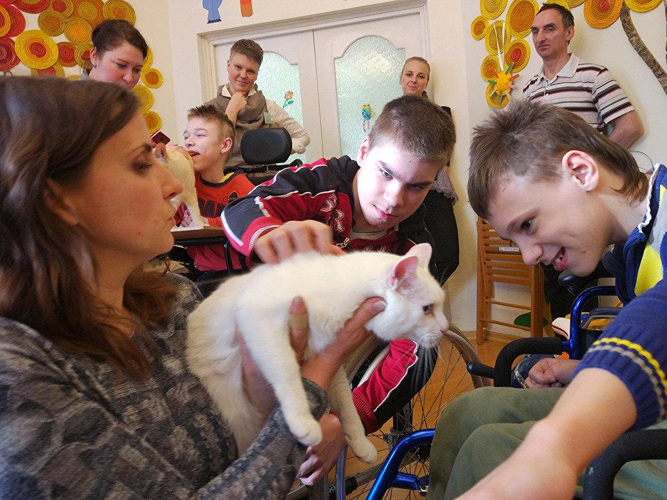 По оценке главного ветеринарного врача эрмитажных котов Анны Кондратьевой, с первым выездным сеансом в качестве кота-терапевта Ахилл справился на пять с плюсом