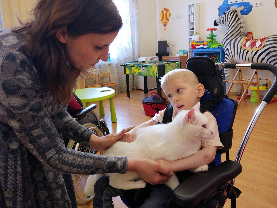 Ахилл был выбран неслучайно. Для такого вида пет-терапии подбираются спокойные, ласковые и общительные коты