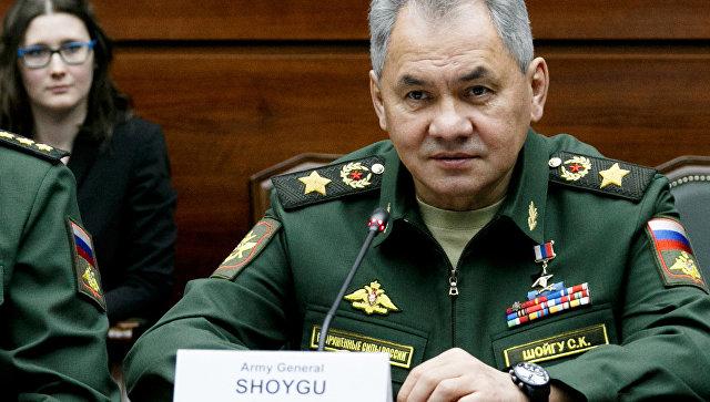 Шойгу сообщил о расширении военных связей с Египтом