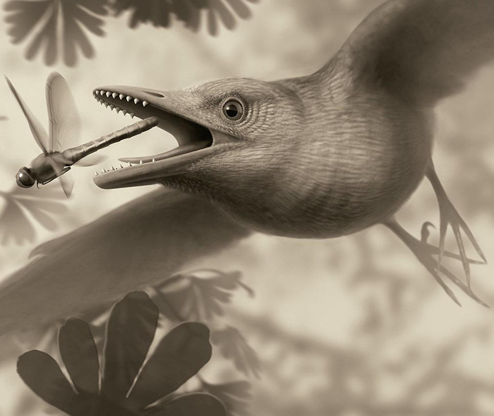1518110560 Маленькие, беззубые, мозговитые. Почему птицы пережили динозавров