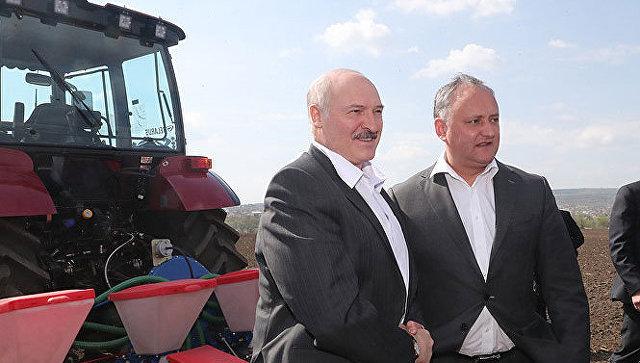 Додон подарил Лукашенко мед иорехи «вобмен» набелорусские тракторы