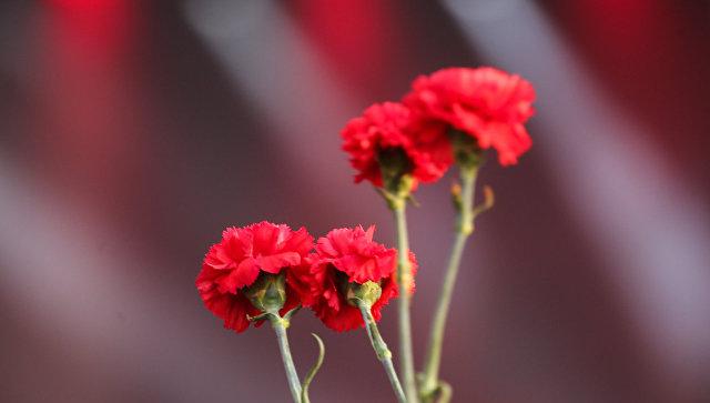 Память поколений проведет акцию Красная гвоздика во всех городах России