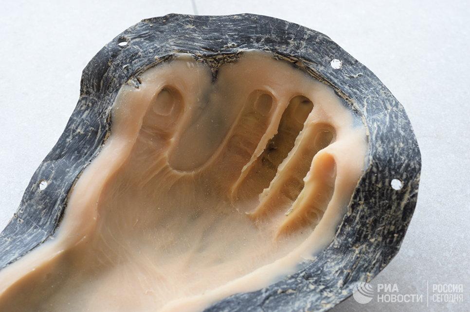 Форма для отливкискульптурной реконструкции руки