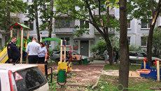 На месте падения дерева на детской площадке в Балашихе. 30 мая 2018