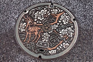 Канализационный люк в Японии