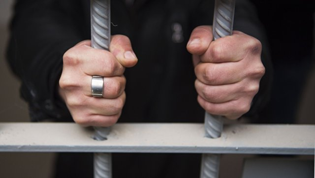 Владелец овчарки, загрызшей девочку в Ленинградской области, пойдет под суд