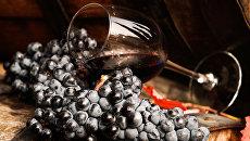 Виноградная лоза и вино в бокале на винодельческом предприятии. Архивное фото
