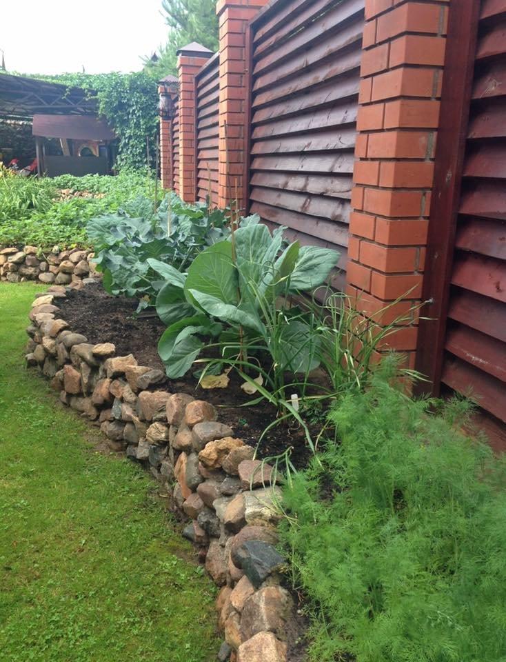 Огород вдоль стены