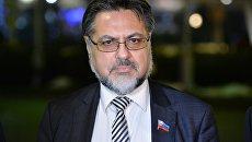Представитель Луганской народной республики Владислав Дейнего