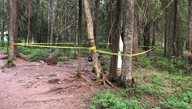 Деревянная фигура упала на ребенка, придавив его своим весом, на территории туристического комплекса Верхние Мандроги Подпорожского района Ленобласти. 23 июня 2018