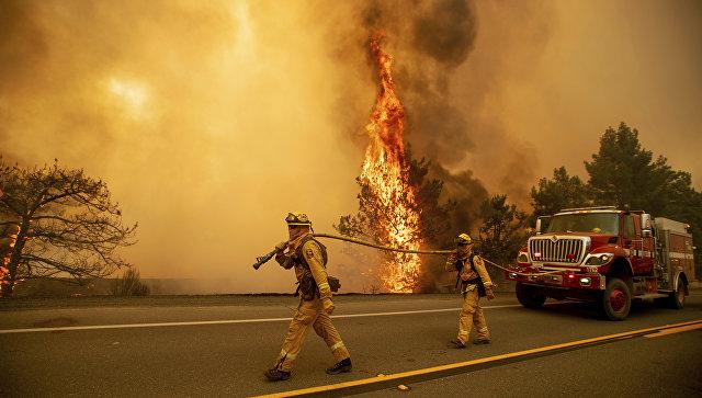 Лесной пожар уничтожил около 1 000  домов вКалифорнии, есть жертвы