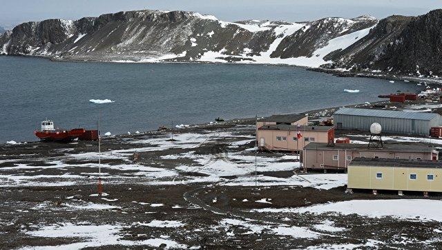 На острове Ватерлоо в Антарктиде. Архивное фото