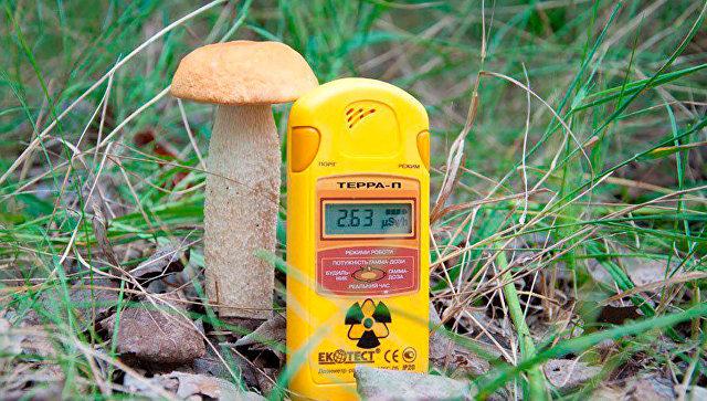 Радиоактивный гриб