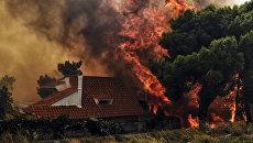 Пожар недалеко от Афин. Архивное фото