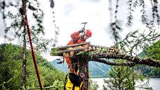Волонтеры построили в Тофаларском заказнике восемь гнезд для скопы и орлана