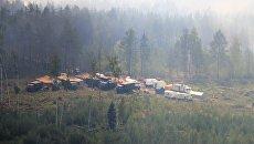 Работы по тушению природного пожара в Петушинском районе Владимирской