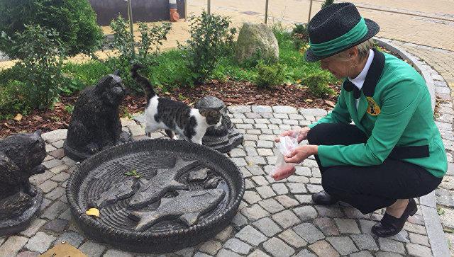 Логунова кормит животных в Котофейне