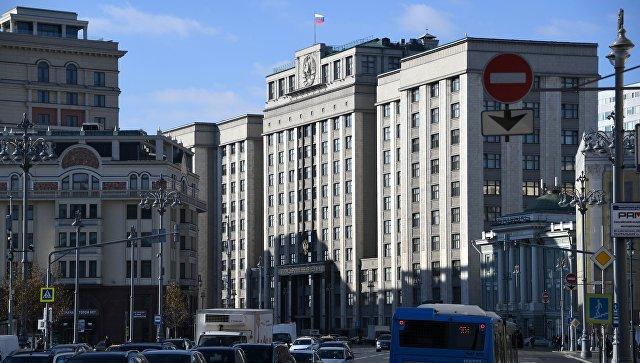 Штрафы для самозанятых в первый год применяться не будут, заявили в Госдуме