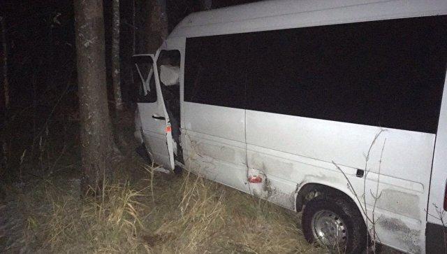В МВД рассказали о водителе микроавтобуса, попавшего в ДТП под Тверью