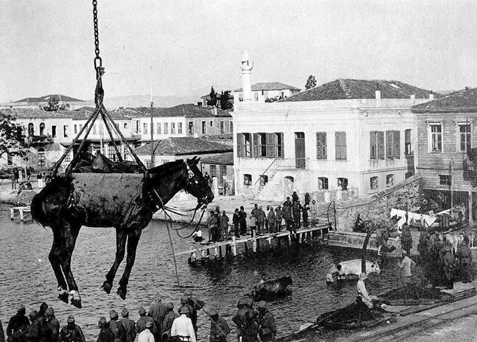 Чанаккале, Турция. Выгрузка лошади, снаряжения для австро-венгерской армии. К началу Первой мировой войны кавалерия являлась единственным подвижным родом войск и составляла 8-10 процентов численности армий воюющих коалиций.