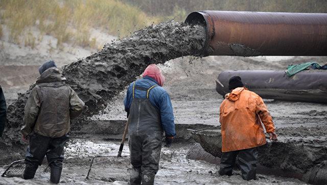 Сачколовы трудятся у сливной трубы завода