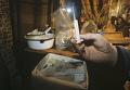 Наркотические вещества обнаруженные сотрудниками милиции