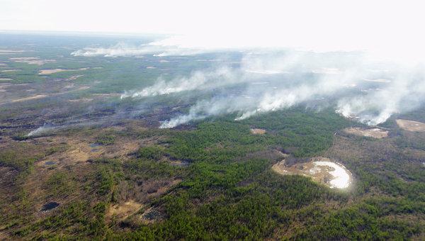 Тушение лесных пожаров в Якутске. Архивное фото