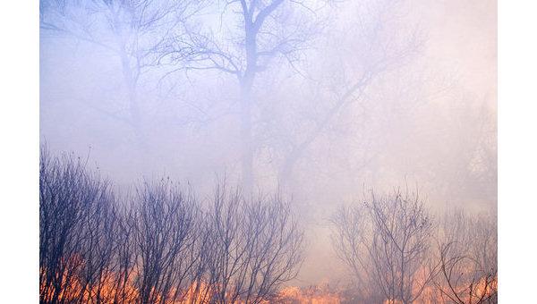 Пожар, начавшийся две недели назад в Штате Виктория в районе Мельбурна, распространился в штат Новый Южный Уэльс.