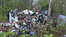 Фрагменты самолета Ан-28, потерпевшего крушение на Камчатке