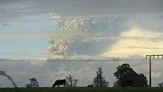 Извержение вулкана Пуйеуэ в Чили