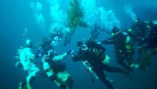 Дайверы опустили новогоднюю елку в Байкал и устроили подводный хоровод