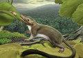 """""""Фоторобот"""" предполагаемого предка всех плацентарных млекопитающих, существующих сегодня на Земле"""