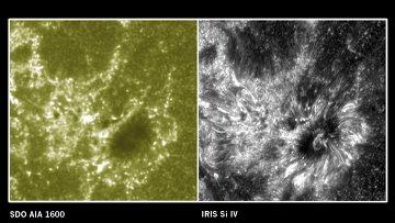 Справа – изображение участка солнечной атмосферы, полученное телескопом IRIS, слева - солнечной обсерваторией SDO