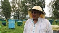 Министр социального развития Новосибирской области Сергей Пыхтин на собственной пасеке