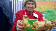 Праздник картошки в Томске