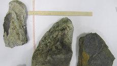 Камни, поднятые из озера Чебаркуль, архивное фото