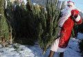 "Мужчина в костюме Деда Мороза на елочном базаре у метро ""Отрадное"" в Москве."
