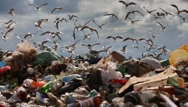 Иванов выступает застроительство мусороперерабатывающего завода вКрыму