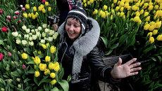 День открытых дверей в теплице с тюльпанами во Владивостоке. Архивное фото