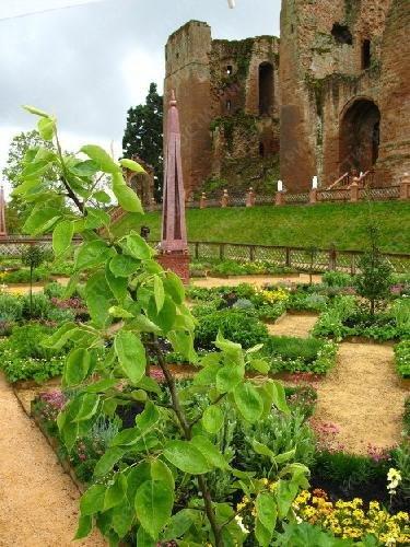 Сад эпохи Елизаветы I воссоздан в Великобритании