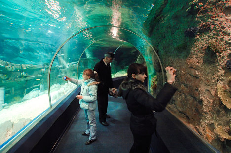 Открытие океанариума