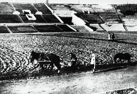 Работники стадиона Динамо сеют газон
