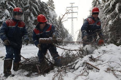 Вырубка деревьев на территории расположения высоковольтных линий