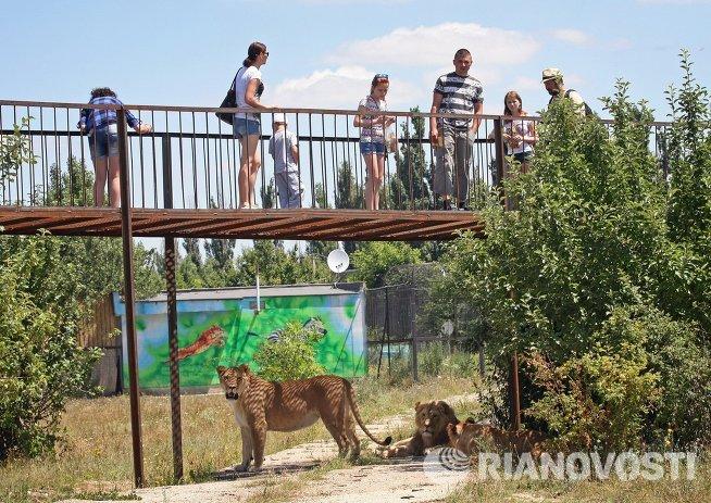 Посетители в сафари-парке